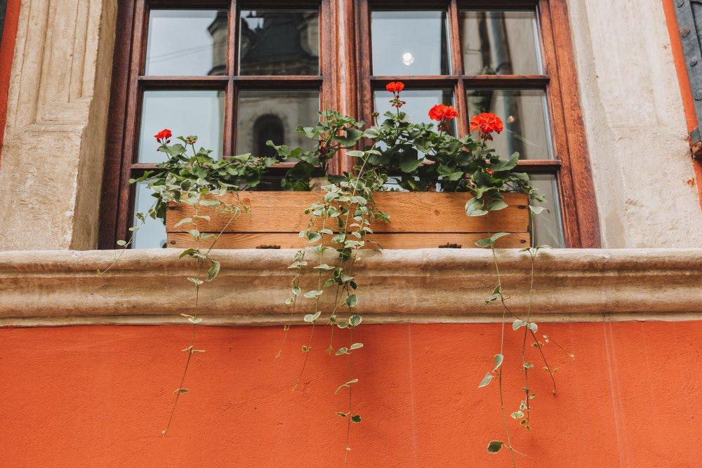 Fönster med spröjs ger ett äkta intryck på renoveringsobjektet